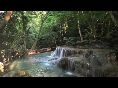 موسيقى جميلة لإستعادة التوازن النفسي والسلام الداخلي صوت الطبيعة Nature Sound Youtube Nature Sounds Waterfall Meditation Videos