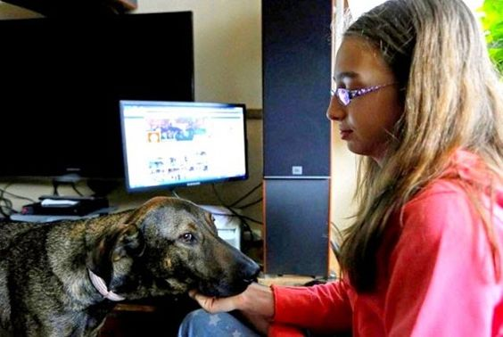 Fauna Urbana Villa María: Adolescente utiliza Facebook para salvar a los per...