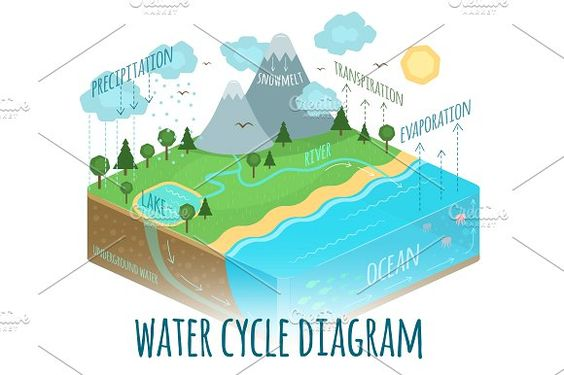 Water Cycle Diagram Water Cycle Diagram Water Cycle Water Cycle Project