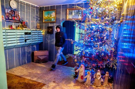 Михаил работает вахтёром в этом парадном уже не первый год.  Каждый Новый год он ставит ёлку до потолка и сам её украшает. Вплоть до Крещения все жильцы могут наслаждаться атмосферой праздника прямо возле лифта.: