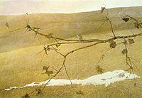 Andrew Wyeth, Long Limb, Tempera, 1999