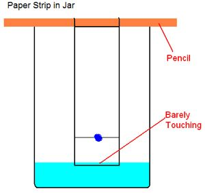 paper chromatography science experiment How to do simple chromatography  com/paper-chromatography-experimenthtml  com/blog/2012/08/kitchen-table-science-simple-chromatographyhtml.