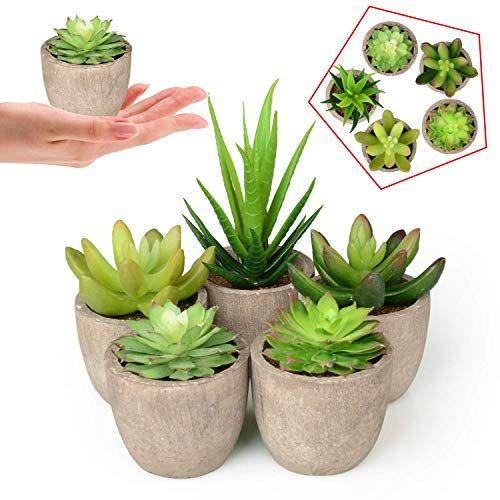 Abree Lot De 5 Plantes Grasses Artificielles Pots Gris Faux