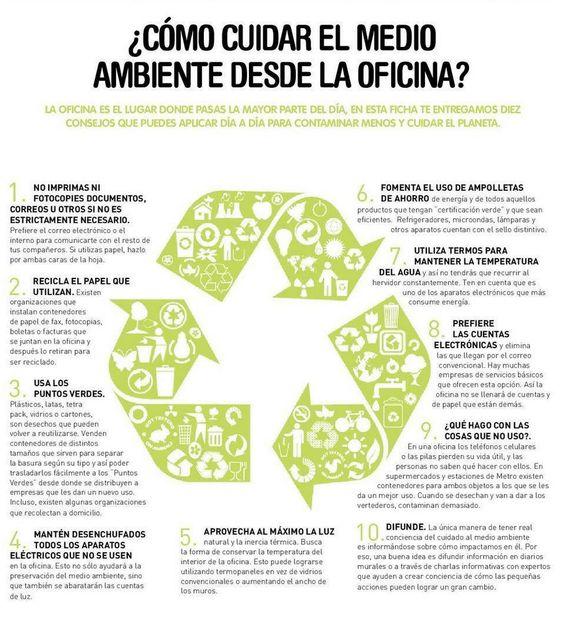 Tips para cuidar el medio ambiente desde tu oficina for Explique que es una oficina
