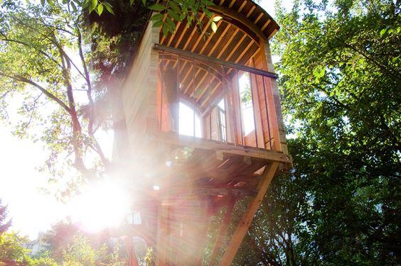 La Roulotte est la première de nos réalisations. Faite en mai 2011, nous l'avons réaliser sans plans. Nichée au fond d'un jardin Bruxellois, au sommet d'un vieux poirier et arrimer à un pin à un hauteur de 4m. De taille modeste (6m²) sont poids est inférieur...