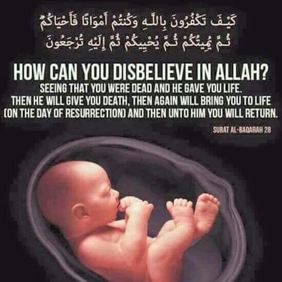 In islam, it is allah. Quotes In The Quran About Death