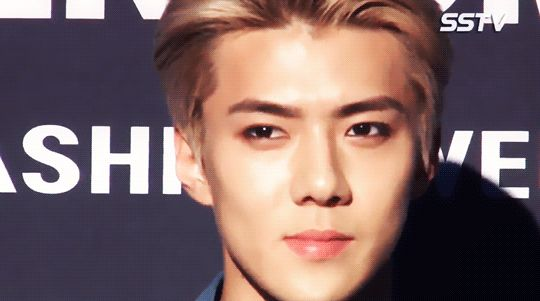 Seoul Fashion Week 151019 : Sehun (1/3)