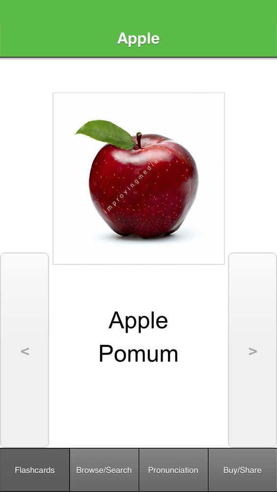 Latin Flashcards with Pictures Lite App - http://itunes.apple.com/app/id882344000