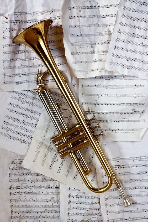 Learn to Play the Trumpet: Beginner to Pro Made ... - Udemy
