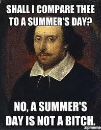 "This meme shows the irony in how Shakespeare's work is regarded by many. The ""poet"" writes sonnet 18 for his beloved, and in comparing the youth to a summer day, the poet tries to immortalize the youth in a poem. Many think Shakespeare writes in ""old english"" and that everything has a beguiled meaning.  Something that was created to immortalize beauty could ironically be taken as an insult by someone who think's Shakespeare's work is too difficult. Source: Transmedial Shakespeare - Jake…"
