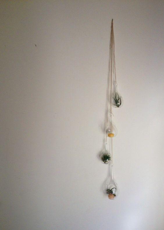 Glass teardrop terrariums!