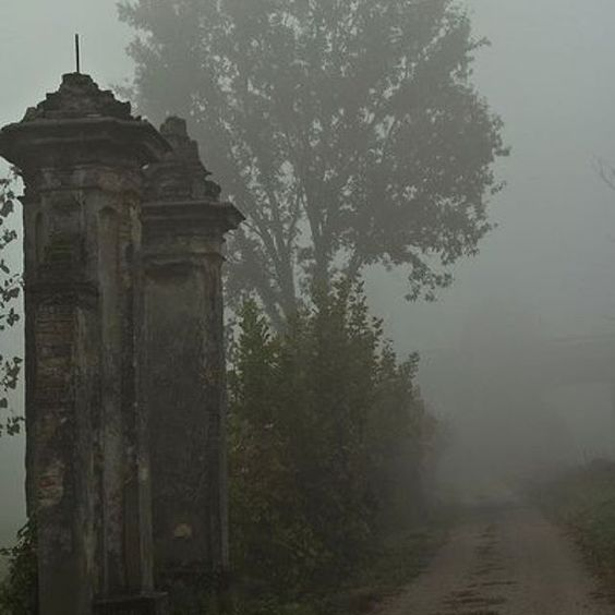 #creepy #gothic #foggy #ghosts #misty #victorian #victorianhouse #victorianstyle