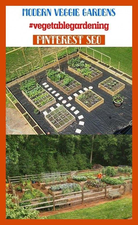 Modern Veggie Gardens Vegetablegardening Seotips Seo Gardens