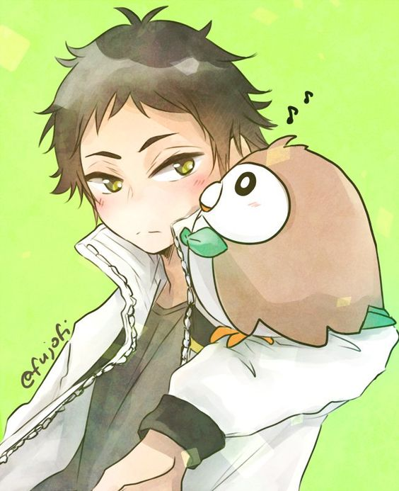 Haikyuu!! And Pokemon Akaashi Keiji and Rowlet