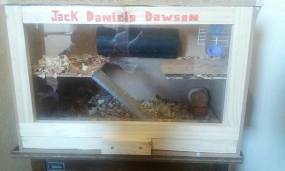 Casita hamster. Vidrio, madera y rejilla. Dos pisos