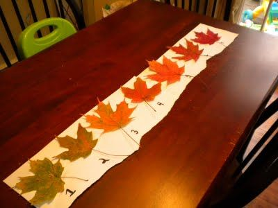 Week 10: tracking leaf color changes. It will be too late in the fall when we reach Week 10, so we're going to start now.