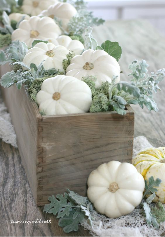 Mini baby boo pumpkins fill out this wooden trough and get accented with soft green moss, dusty miller and webby cheesecloth.