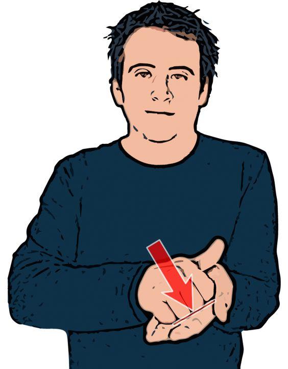 Correct - British Sign Language (BSL)