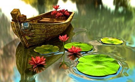 Boat in water lilies pond - Desktop Nexus Wallpapers