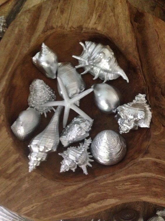 A personal favorite from my Etsy shop https://www.etsy.com/listing/247331064/silver-metallic-painted-sea-shells-for-a