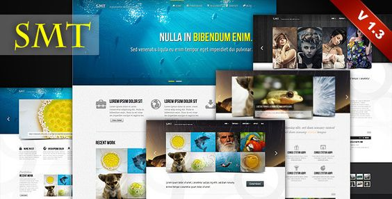 Deals SMT - Premium Wordpress Themetoday price drop and special promotion. Get The best buy