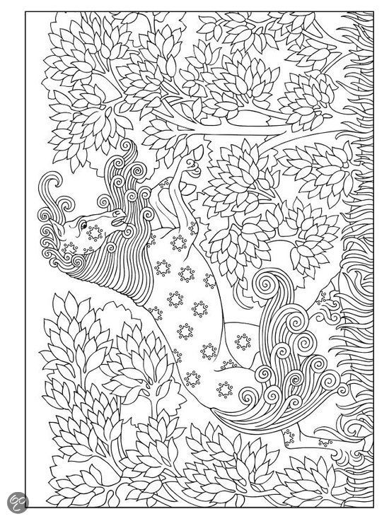 Creative Colouring Patterns : Bol creative haven art nouveau animal designs