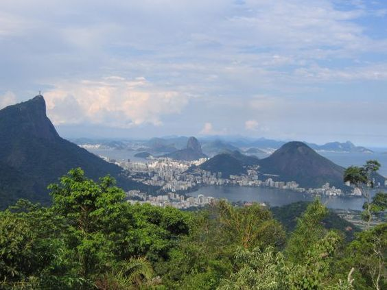 Floresta da Tijuca, Rio de Janeiro, Brazil
