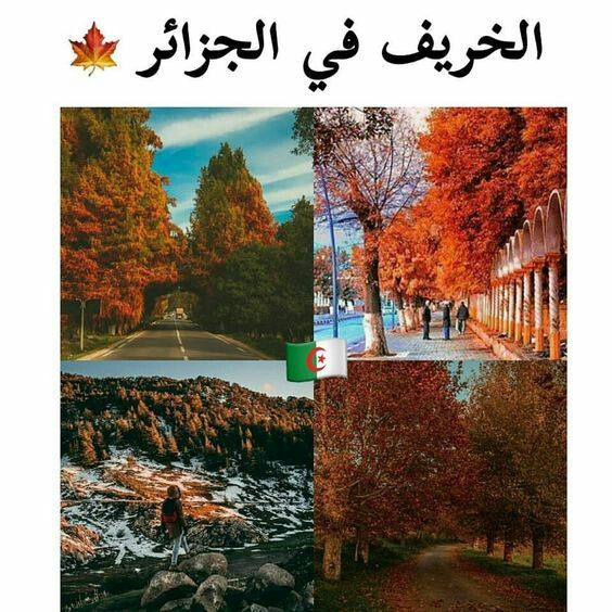 Pin By Sousou La Princesse On Algeria Iphone Wallpaper Eyes Beautiful Pictures Pictures