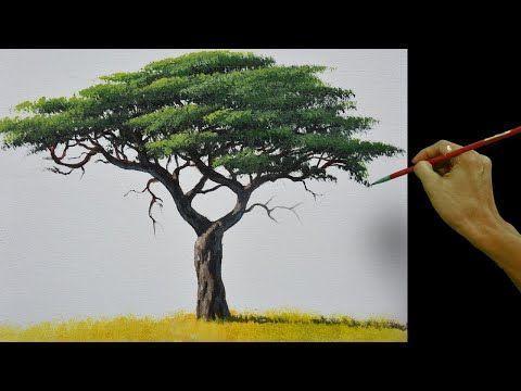 Wie Man Realistische Akazienbaume Malt Acrylmalanleitung Youtube