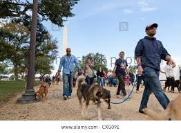 Image result for pictures of people walking their dogs