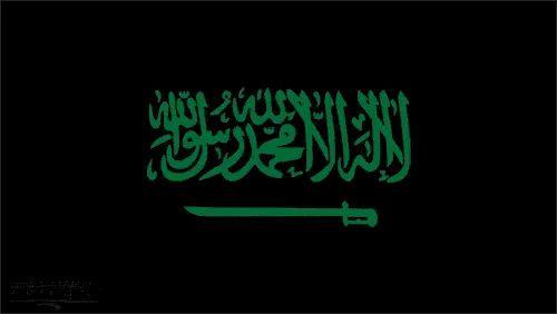 Pin By On Saudi Arabia National Day Saudi Neon Signs National Day