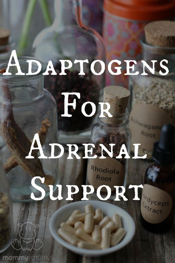 Adaptogens are herbs that help the body adapt to stress. If caffeine is like a map from point A (sleepy) to point B (alert), adaptogens are more like a GPS system that figures out where you are and helps you get where you need to go (balanced).