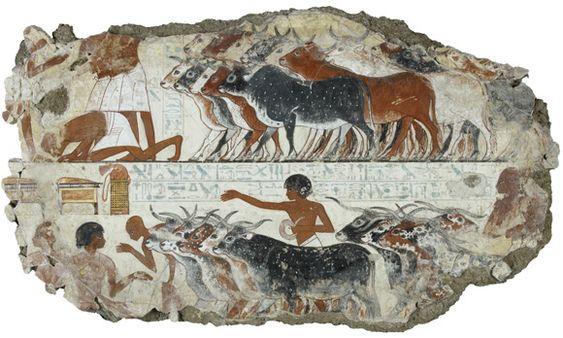 Tumba de Nebamun -El ganado de Nebamun