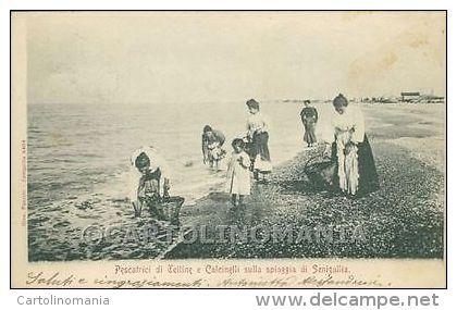 Pescatrici di telline,sulla riva della Spiaggia di Senigallia,in una vecchia foto dei vecchi tempi....Marche. Italia.