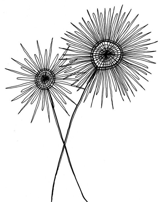 Black And White Line Drawing Flowers : Black and white drawing simple modern fantastic etsy