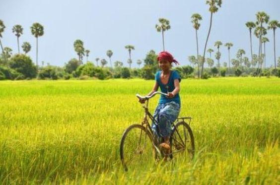 Kambodscha in Stil Reise