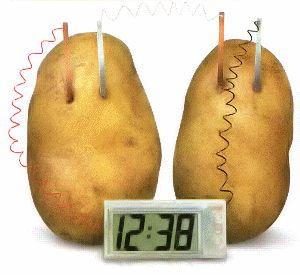 How to Make a Potato Clock (yes, a potato can power a clock!)