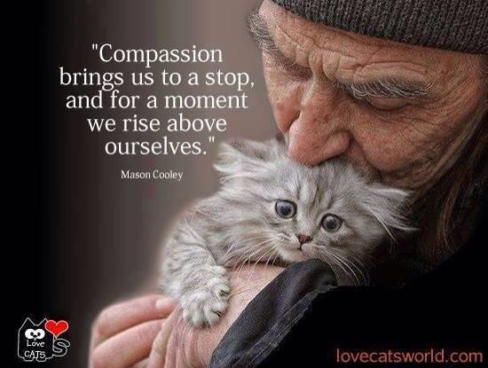 Compassion Works Everytime: