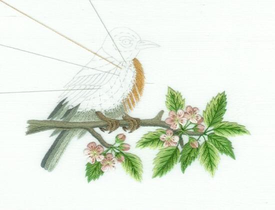 Robin estadounidense en el flor del Trabajo rama en fase de Fotos: Pintura Aguja bordado a mano, un diseño del bordado de la mano como una alternativa a la del punto de cruz.