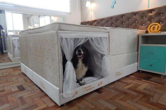 A empresa Colchão Inteligente, de Campo Bom, tem uma opção pet friendly entre seus produtos. É uma cama embutida na extremidade do colchão, que poupa espaço dentro do quarto e garante o conforto do animal de estimação. O nicho da foto acima (70cm x 60cm x 75cm) é uma nova versão da cama, lançada para cães de grande porte: a primeira tinha 40cm x 50cm x 50cm. A estrutura é feita em MDF com melamina, e o interior, estofado com tecido de cetim – removível para lavagens.