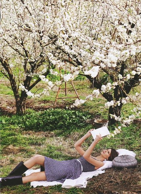 Orchards reading and spring on pinterest for Where can i go apple picking near me