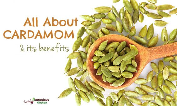 "Cardamom is one of the most valued spices in the world with an intense aromatic flavour used to bring out the best in both savoury and sweet dishes. Its eloquence, culinary magic and healing powers have earned it the title ""Queen Of Spices"". This magical spice enjoys a colourful history dating back thousands of years. Spiritually,"