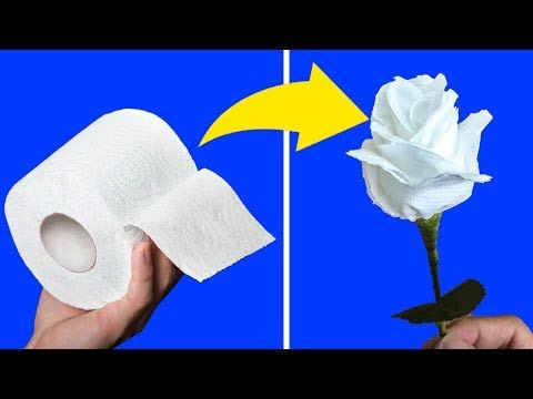 04 Awesome Diy Hacks With Toilet Paper Tlt Youtube Toilet