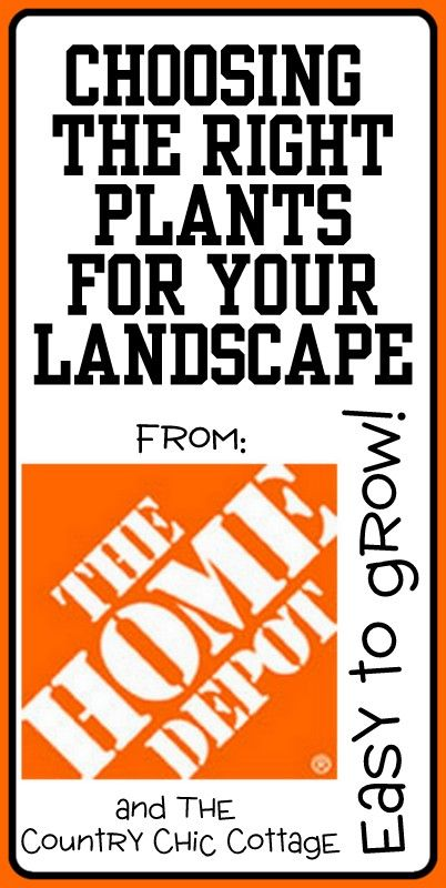 Choosing the right plants for your landscape with for Choosing plants for landscaping