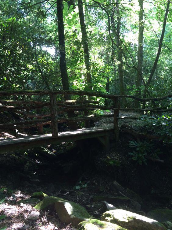 Montreat NC  SheaShea's bridge.