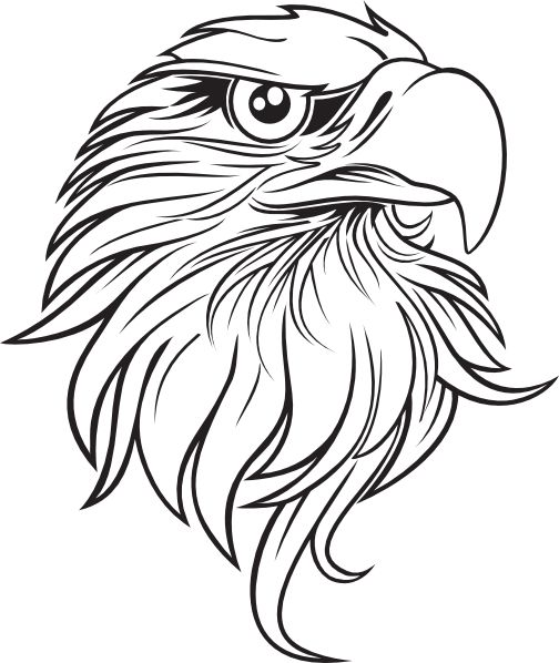 Eagle Tattoo Line Drawing : Black and white cartoon feather large clip art