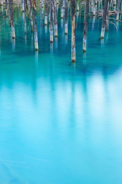 北海道美瑛の青い池