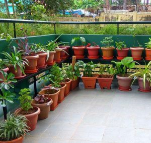 Planting Pots Outdoor Gardens Design Garden Design Garden Layout