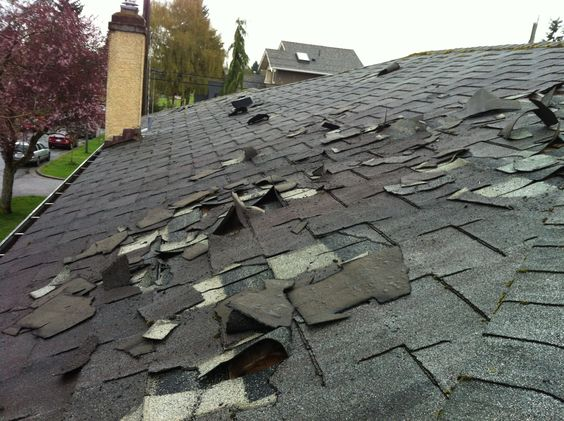 Reputable hail and wind damage roof services in Savannah, GA