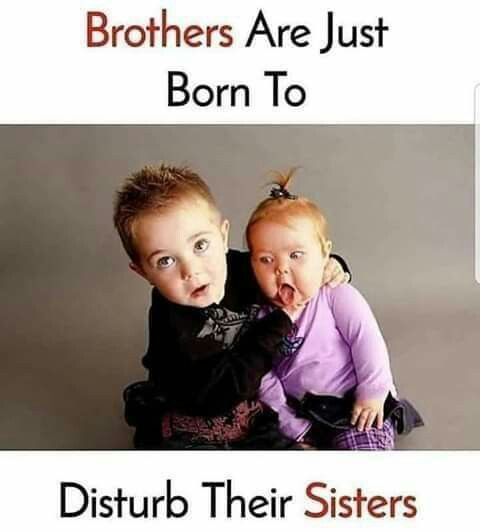 Sister Quotes Best Friend So True Sister Quotes Funny Siblings Funny Quotes Sister Quotes